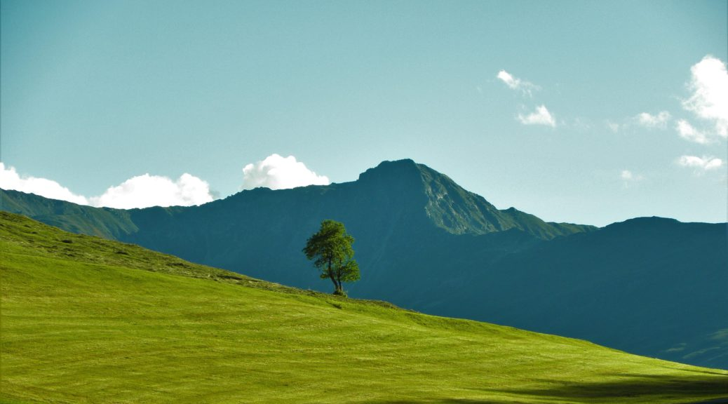 Green meadow with a mountain in the back in sunshine
